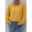 Casual Womens Solid Color V Neck Long Sleeve Relaxed Fit Tee Top in Yellow