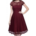 Fashion Lace Inserted Round Neck Short Sleeve Plain Midi Fit Flare Dress