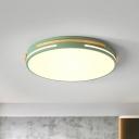 Minimalist Circle Flush Mount Light Acrylic LED Sitting Room Ceiling Flush in White/Green