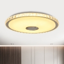 Chrome Ultrathin Music Ceiling Light Simplicity 16
