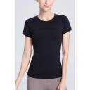 Fitness Ladies Plain Quick Dry Short Sleeve Crew Neck Slim Fit T Shirt
