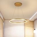 Circle Metal LED Chandelier Pendant Minimalist Gold Suspension Lamp in Warm/White Light, 16
