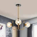 Global Cognac Glass Pendant Chandelier Minimalist 3/6 Bulbs Gold Suspension Lamp in Warm/White Light