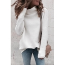 Trendy Elegant Ladies' Long Sleeve High Neck Loose Fit Purl Knit Plain Pullover Sweater Top