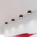 Cylindrical Mini Corridor Flush Mount Aluminum Macaron Surface Mounted LED Ceiling Lamp in Pink/Black/White and Wood