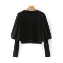 Classic Womens Sweater Plain Panel Long Bishop Sleeve Slim Fitted Round Neck Sweater