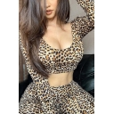 Creative Womens Co-ords Leopard Skin Print Slim Fitted Pants Scoop Neck Long Sleeve Cropped Tee Co-ords