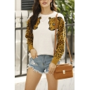 Cool Women's Sweater Leopard Pattern Color Block Ribbed Hem Round Neck Long Sleeves Regular Fit Sweater