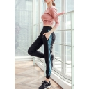 Basic Womens Co-ords Quick Dry Long Sleeve Round Neck Tee Color Block Side Panel Slim Fitted Pants Yoga Co-ords