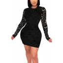 Womens Dress Stylish Lace Short Sleeve Mini Slim Fitted Round Neck Bodycon Dress