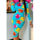 Resort Style Women's Dress Floral Multi Color Pattern Round Neck Long Sleeves Slim Fitted Bodycon Dress
