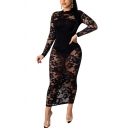 Trendy Women's Bodycon Dress Lace Transparent Broderie Detail Round Neck Long-sleeved Slim Fitted Bodycon Dress