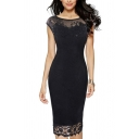 Unique Womens Dress Embroidered Lace Cap Sleeve Invisible Zipper Back Knee Length Slim Fitted Round Neck Pencil Dress