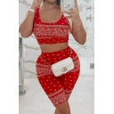 Cool Women's Set Paisley Pattern Scoop Neck Sleeveless Slim Fitted Tee Top with High Waist Shorts Co-ords
