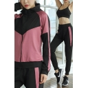 Popular Womens Set Colorblock Long Sleeve Jacket Crop Tank Short Sleeve T-shirt Pants Set