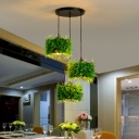 3-Head Iron Ceiling Pendant Rustic Green Drum Shaped Dining Room Plant Suspension Light with Round/Linear Canopy
