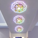 Flower Passageway LED Ceiling Flush Clear and Amber Crystal Modern Flush Mounted Light in Warm/White/Multi-Color Light, 3/5w