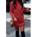 Basic Women's Sweatshirt Dress Solid Color Crew Neck Long Sleeves Relaxed Fit Straight Sweatshirt Dress