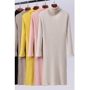 Casual Women's Sweater Dress Solid Color Ribbed Knit Turtle Neck Long Sleeves Midi Sweater Dress
