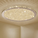 Simplicity Disc Shaped LED Flush Light Crystal Living Room Flush Mount Ceiling Fixture in Stainless Steel