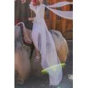 Womens Dress Creative Plain Color Waist-Control Maxi Surplice Neck A-Line Long Sleeve Swing Dress