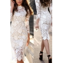 White Sexy Dress See-through Lace Floral Embroidery Long Sleeve Crew Neck Mid Sheath Dress for Women