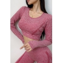 Womens Yoga T-Shirt Trendy Seamless Crew Neck Cropped Long Sleeve Skinny Fit T-Shirt