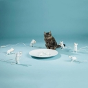 Mouse Shape Living Room Nightstand Lamp Resin 1-Light Decorative Table Light in White