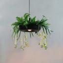 1 Head Geometric Pendant Lamp Farmhouse Iron Suspension Light with Plant Decoration