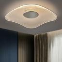 Melting Frame Acrylic Ceiling Lighting Novelty Simple Chrome LED Flush Mount Light for Bedroom