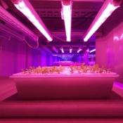 LED Plant Grow Tube 14.4W SMD 3528 90cm Full Spectrum Plant Grow Light Pack of 5