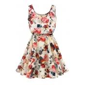 Round Neck Sleeveless Floral Printed Mini A-Line Dress
