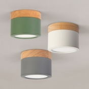 Green/Gray/White Ceiling Mount Light Nordic Stylish Acrylic Down Light in Warm/White for Hallway