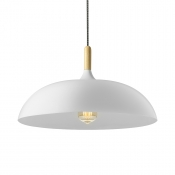 Modern Style Lighting White LED Pendant Light Ceiling Light Fixtures
