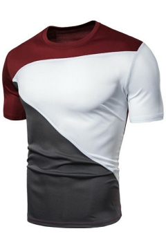 Guys Chic T-Shirt Color Panel Round Neck Short Sleeves Slim Fit T-Shirt