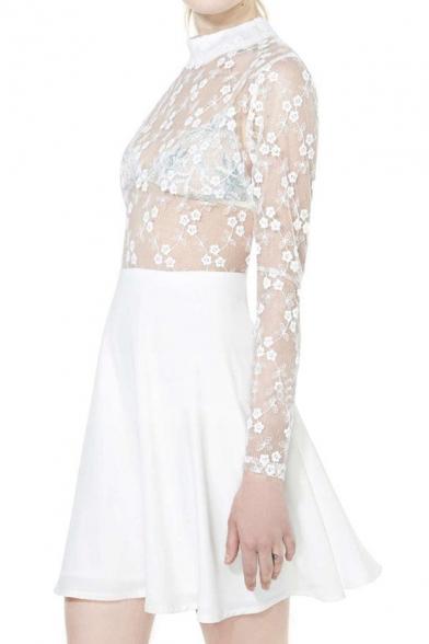 Semi Sheer Lace Insert Mini Dress with Long Sleeve