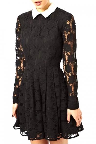 Lace Overlay Shirt Collar Skater Dress With Zipper Back