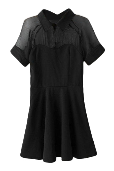 Sexy Sheer Chiffon Insert Lapel Short Sleeve Fit and Flare Mini Dress
