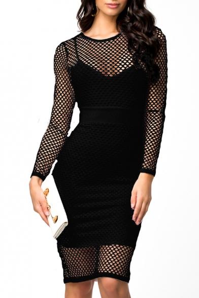 Plain Mesh Cutout Sheer Long Sleeve Midi Dress
