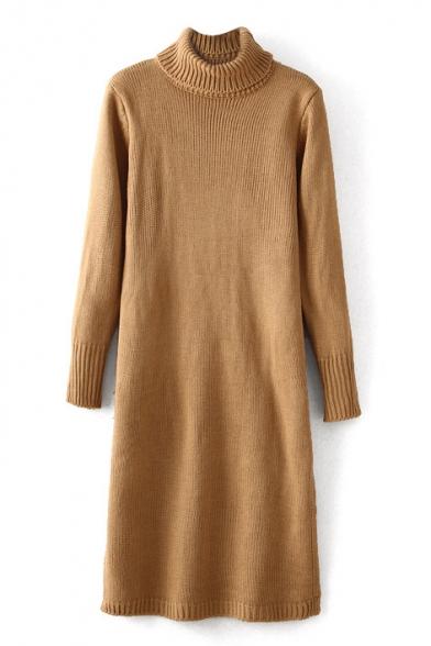 Plain Turtle Neck Long Sleeve Knit Sweater Dress