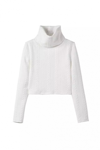 Plain White Turtle Neck Long Sleeve Crop Sweater - Beautifulhalo.com