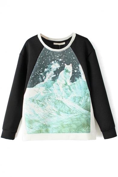 Print Raglan Sleeve Round Neck Sweatshirt