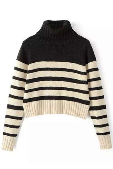 Turtleneck Long Sleeve Stripes Cropped Sweater