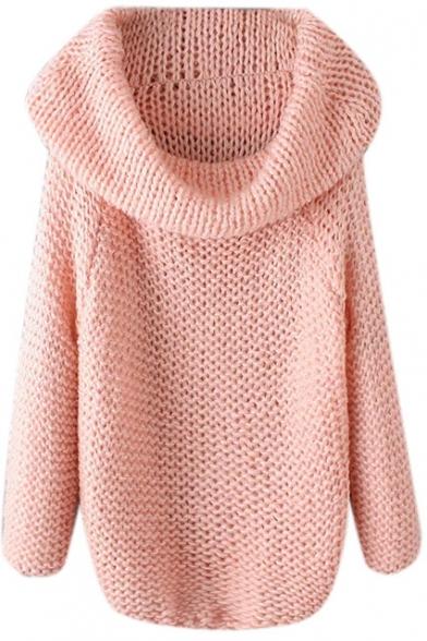 Turtleneck Raglan Sleeve Plain Pullover Sweater
