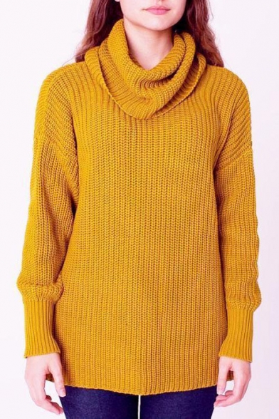Chunky Knit Turtleneck Long Sleeve Plain Sweater