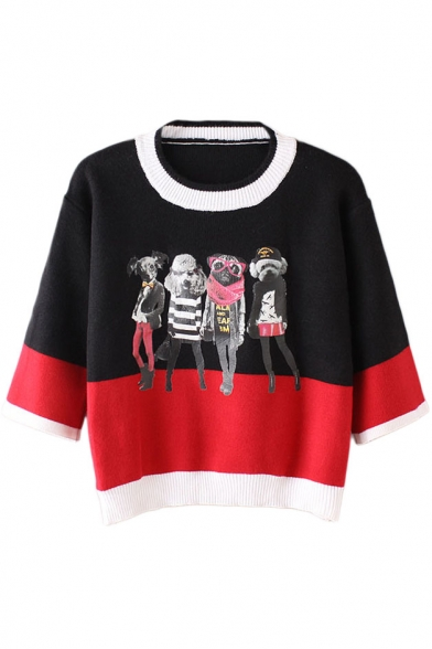 Color Block Dog Print 3/4 Length Sleeve Cropped Sweater