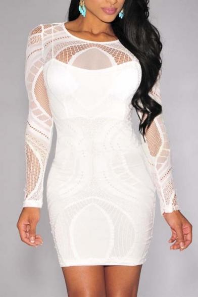 Women's Sleeveless / Long Sleeve Lace Party Bodycon Dress
