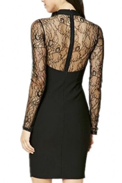 Chic High Sexy Sheer Neck Sleeve Mini Bodycon Long Lace Inserted Dress rYfSxCcrqw
