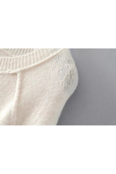 Simple Pullover Sleeve Plain Comfort Long Neck Sweater Basic Round wnq761wd