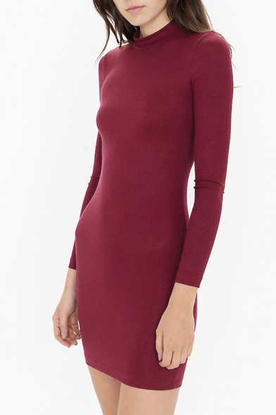 Retro Turtleneck Long Sleeve Simple Plain Slim Fitted Mini Dress